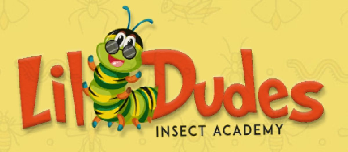 Lil' Dudes Insect Academy